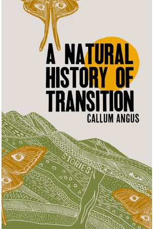 A Natural History of Transition