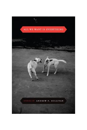 All We Want Is Everything e-book