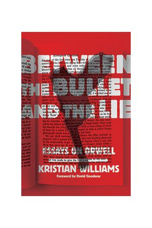 Between the Bullet and the Lie e-book