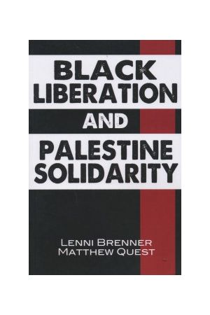 Black Liberation and Palestine Solidarity e-book