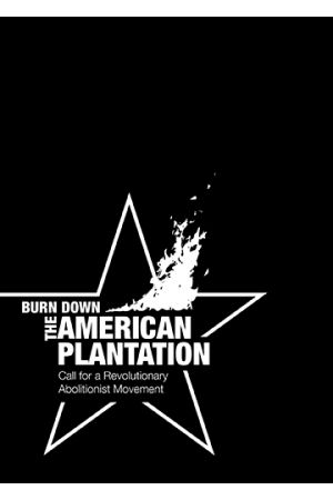 Burn Down the American Plantation