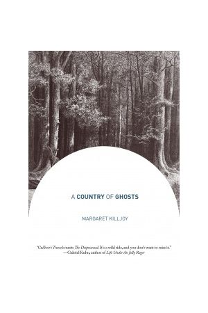 A Country of Ghosts e-book