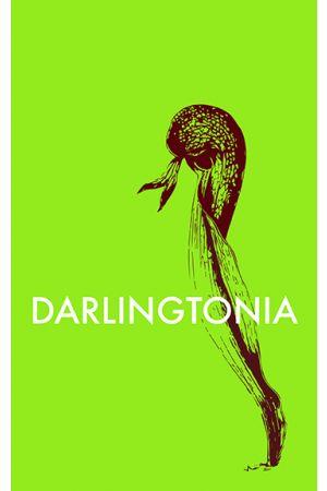 Darlingtonia