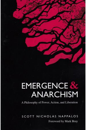 Emergence and Anarchism