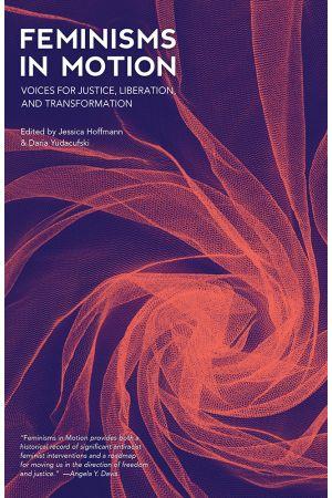 Feminisms in Motion e-book
