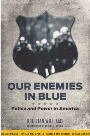 Our Enemies in Blue e-book