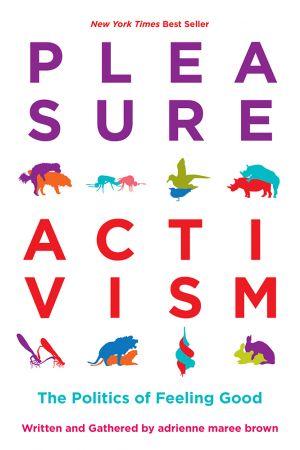 Pleasure Activism e-book