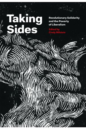 Taking Sides e-book