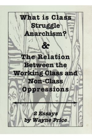 What is Class Struggle Anarchism & The Relation Between Class and Non-Class Oppressions